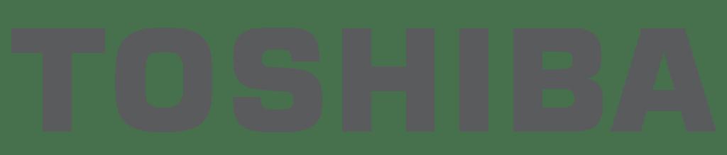 Stolas Assistenza Tecnica Informatica - Computer Toshiba